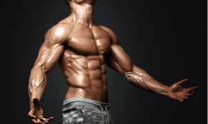 4 Best Steroids for Cutting and Getting a Ripped Body
