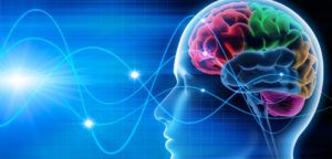 10 Tips to Improve Your Brain Function