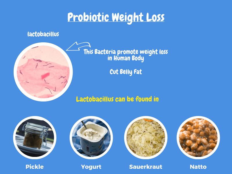 Probiotic Diet